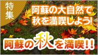 阿蘇の秋を満喫
