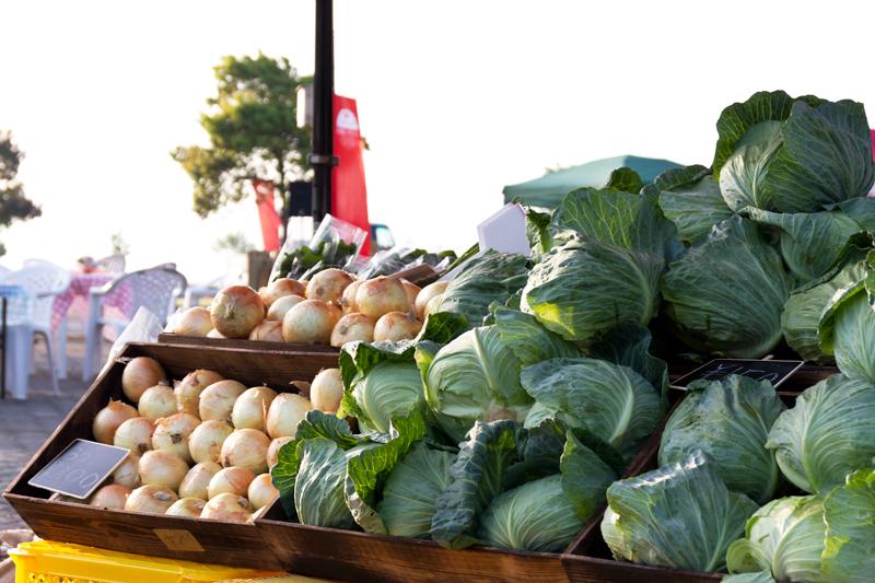 阿蘇マルシェ野菜 写真